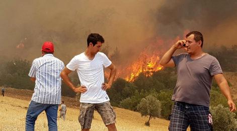 Adrasan'da yangın sürüyor... 7 ev kül oldu, Olimpos tamamen boşaltıldı