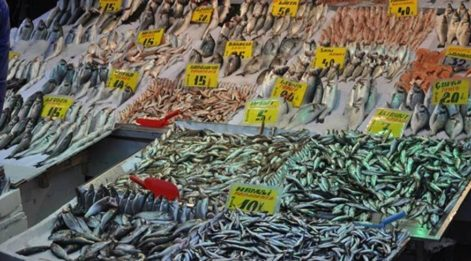 Balık fiyatlarına zam geldi! İşte zamlı fiyat tarifesi. Hangi mevsimde hangi balık yenir? Zamanına göre balık türleri