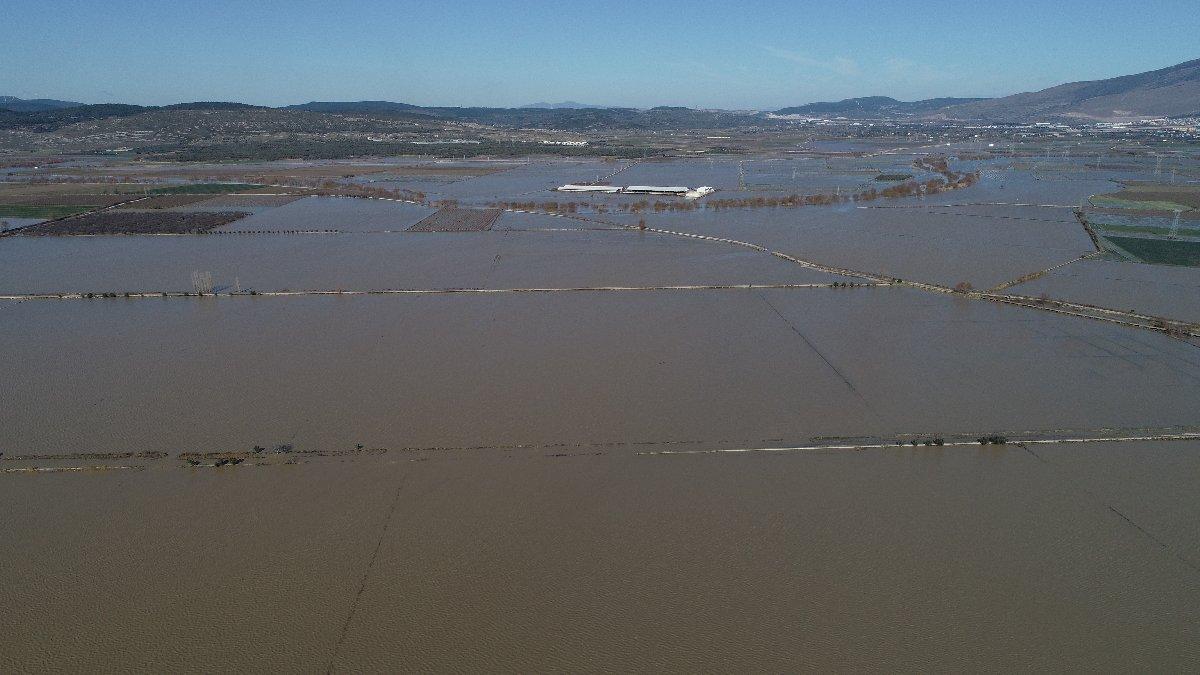 Yağmur ıspanağı vurdu, onlarca dönüm tarım arazisi sular altında