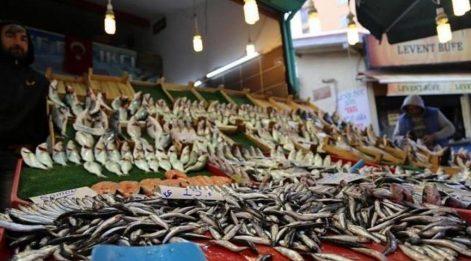 Hangi balık hangi ayda yenir? Eylül ayında hangi balık lezzetli olur?