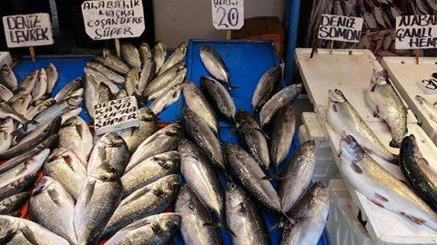 Eylül ayında lezzetli olan balıklar... Hangi balık hangi ayda yenir?