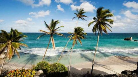 Barbados bir yıllık vize veriyor: 'Evden değil Karayipler'den çalışın'