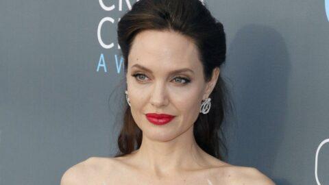 Angelina Jolie, eski eşiyle oğlunu tanıştırdı