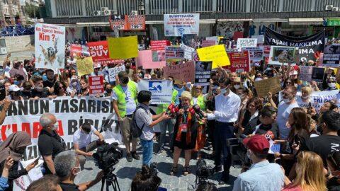 Ankara'da Hayvanları Koruma Kanunu protestosu