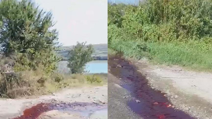 Kesilen kurbanların kanı baraja aktı