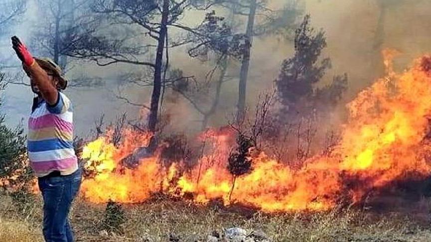 Muğla Menteşe'de orman yangını çıktı