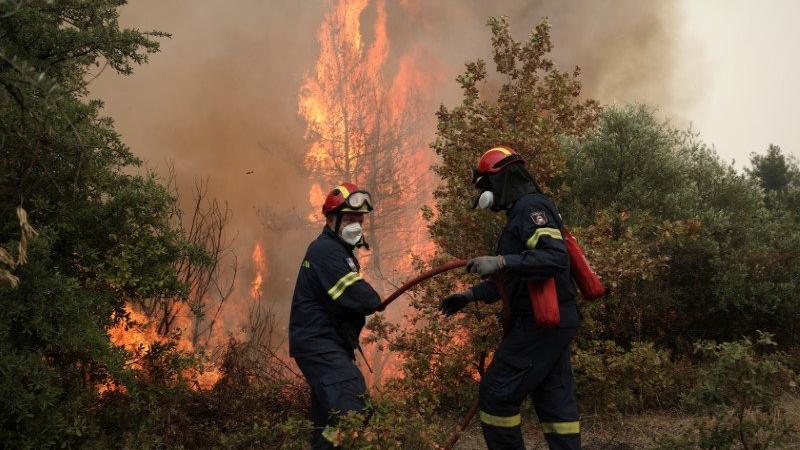 Yunanistan'da 63 farklı yerde orman yangını