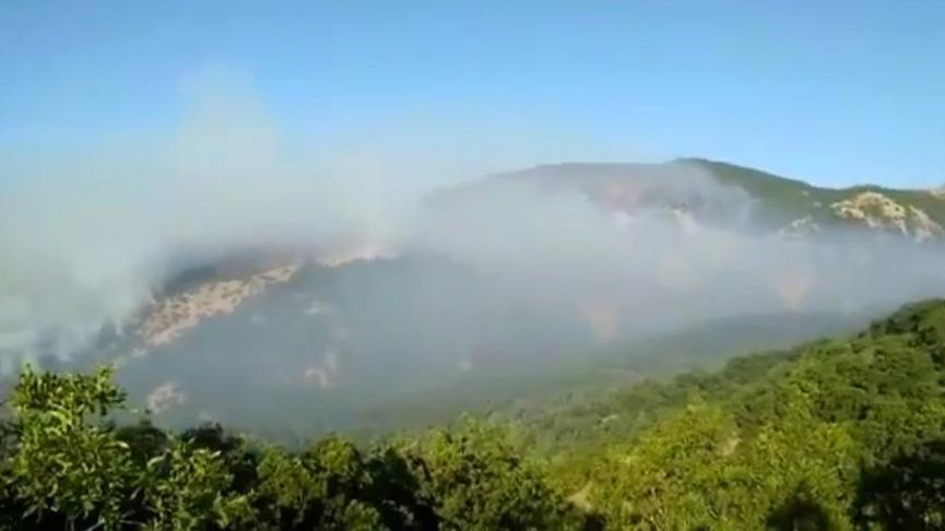 74 barodan Tunceli'deki orman yangını için ortak açıklama