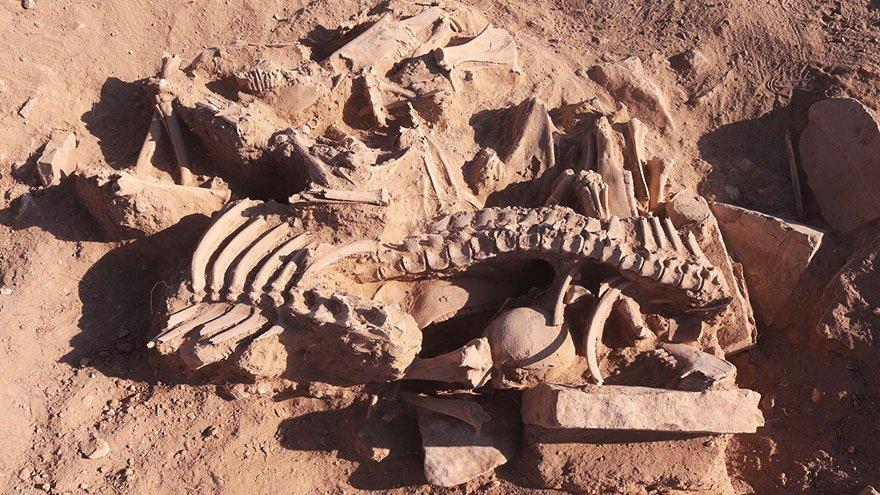 Urartuların ölü gömme geleneğine ışık tutacak keşif