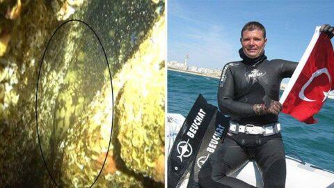 Yıllar sonra Marmara'da orfoz balığı