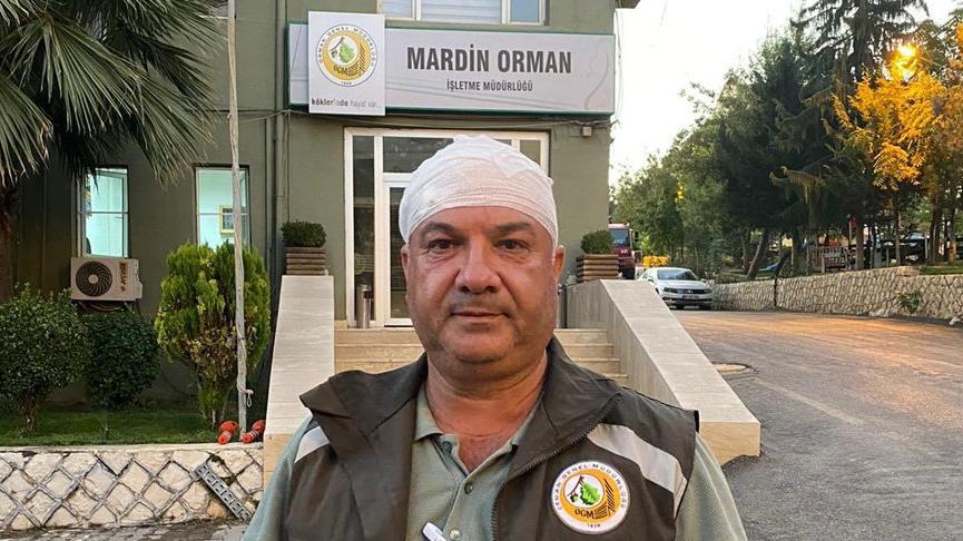 Kaçak ağaç kesimi yapanlara işlem yapan orman görevlilerine saldırı