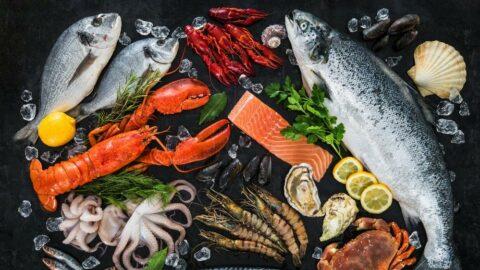 İnsanlık 2050 yılından sonra daha çok deniz ürünlerine yönelebilir