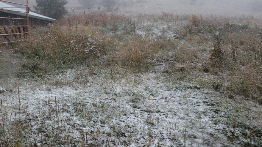 Bolu'ya yılın ilk karı düştü