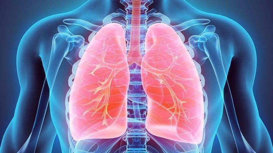Akciğerlere direnç kazandıran besinler