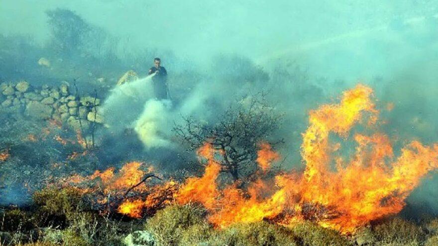 Bodrum Çilek Dağı sabaha kadar yandı
