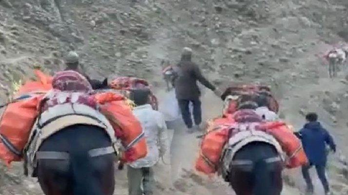 Atlarla uyuşturucu sevkiyatına polis engeli