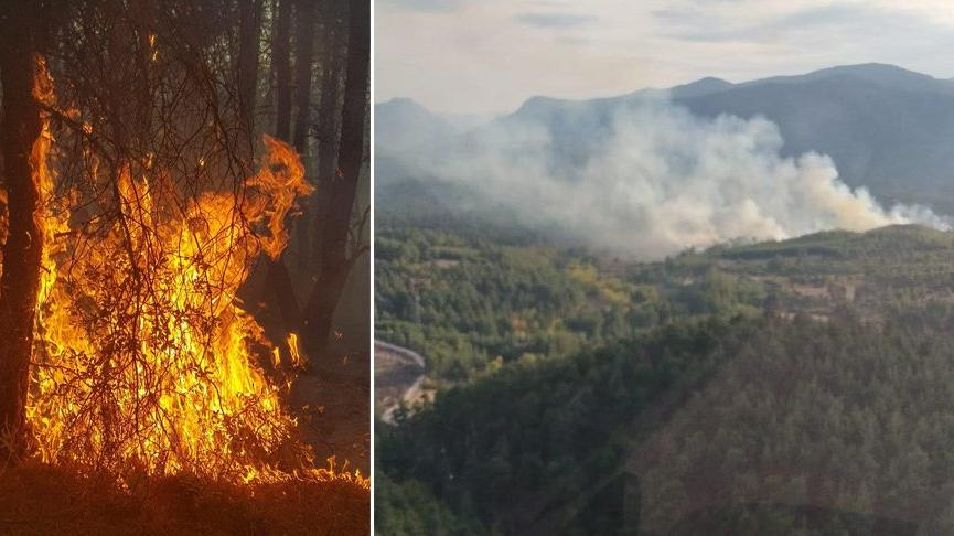 Kütahya'da 4 farklı noktada orman yangını