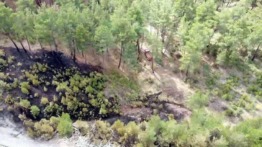 Kütahya'daki orman yangınında 4 hektar alan zarar gördü