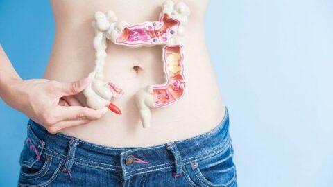Sağlıksız bağırsaklar şişmanlatıyor