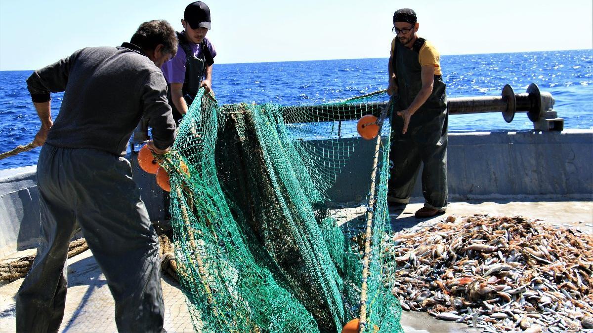 Denizden 4 TL'ye çıkan balık tezgâhta 35 TL