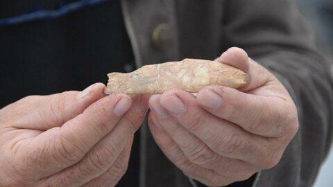 8 bin yıl öncesine ait balık figürü bulundu